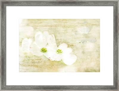 Spring Dreams Framed Print