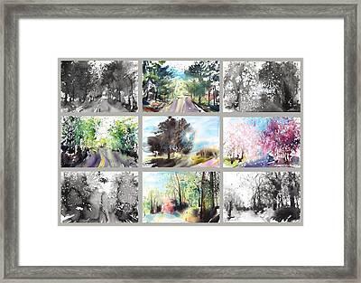 Spring Drive Framed Print