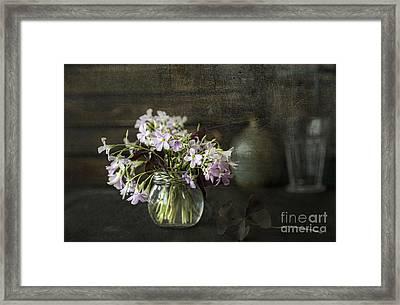 Spring Framed Print by Elena Nosyreva
