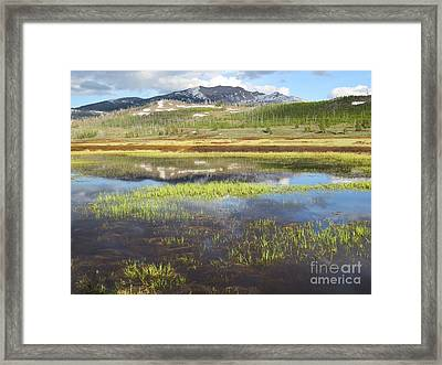 Spring Evening On The Gallatin Framed Print by Harriet Peck Taylor