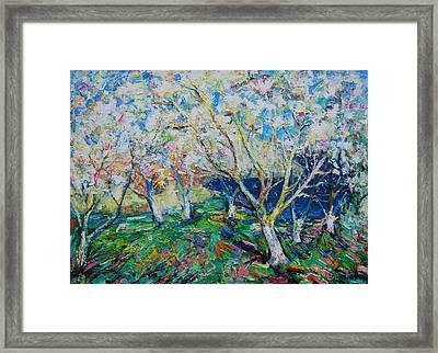 Spring Framed Print by Evgen Bondarevskiy