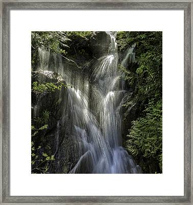 Spring Falls Framed Print by Gary Neiss