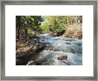 Spring Falls Framed Print by Jane Munroe
