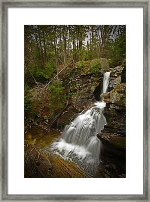 Spring Falls Framed Print