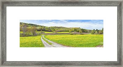 Spring Farm Landscape With Dirt Road And Dandelions Maine Framed Print