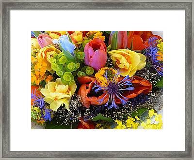Spring Fever Framed Print by Lauren Leigh Hunter Fine Art Photography