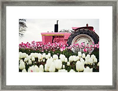 Spring Fever  Framed Print by Michelle Bauer