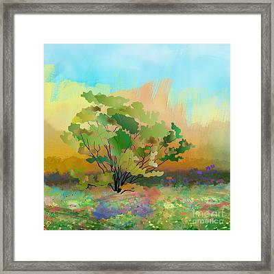 Spring Field Framed Print by Bedros Awak