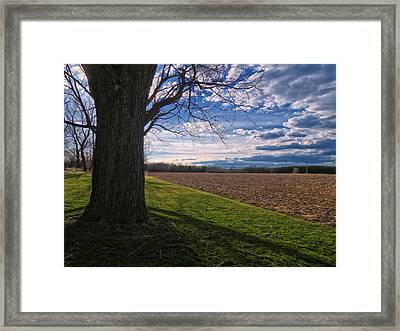 Spring Fields Framed Print by Susan Desmore