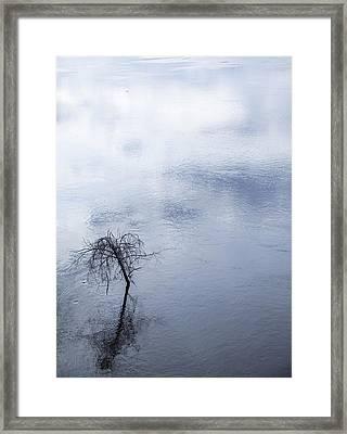 Spring Flood In Georgia Framed Print