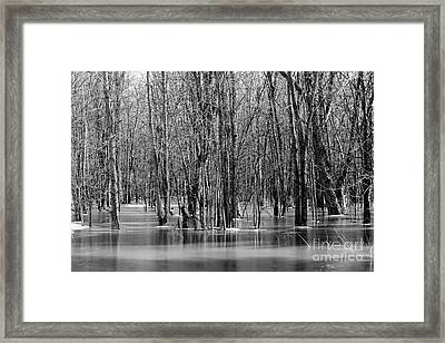Spring Flooding Framed Print