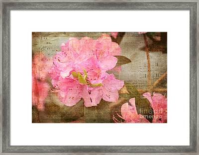Spring Floral Framed Print by Arlene Carmel