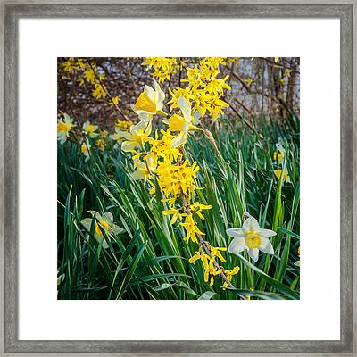 Spring Floral Square Framed Print by Bill Wakeley