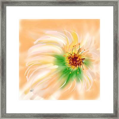 Spring Flower Framed Print by Angela A Stanton