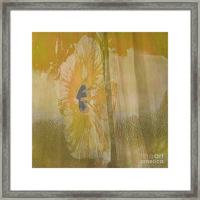 Spring Flower Unveiling Framed Print by Beverly Guilliams