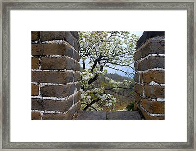 Spring Flowers At The Great Wall Framed Print by Larry Moloney