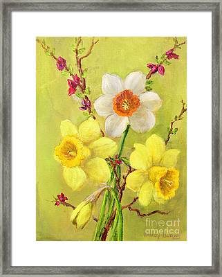 Spring Flowers Framed Print by Randol Burns