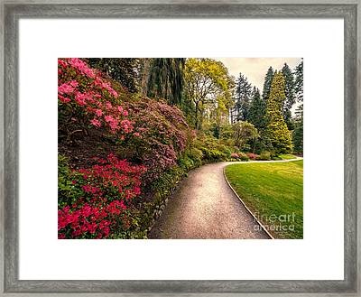 Spring Footpath Framed Print by Adrian Evans