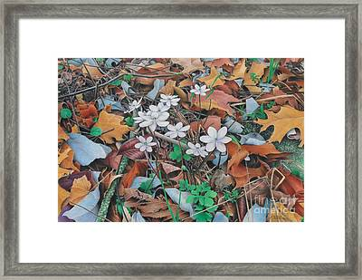 Spring Forward Framed Print by Pamela Clements