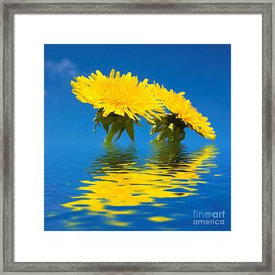 Spring Freshness Framed Print