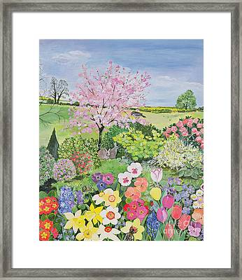 Spring From The Four Seasons  Framed Print by Hilary Jones