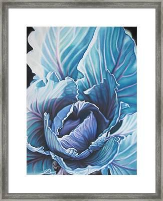 Spring Garden Cabbage Framed Print