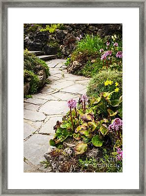 Spring Garden Framed Print by Elena Elisseeva