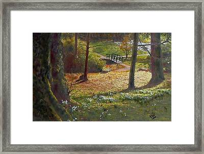 Spring Glow At  Kailzie Gardens Peebles Framed Print by Richard James Digance