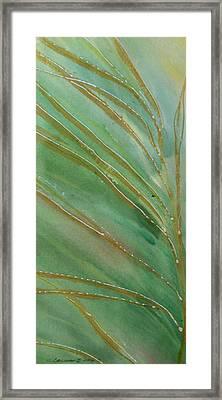 Spring Grasses Framed Print