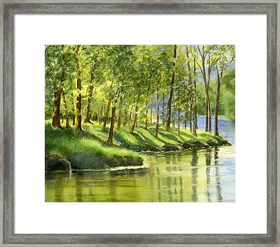 Spring Green Trees With Reflections Framed Print