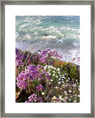 Spring Greets Waves Framed Print by Susan Garren