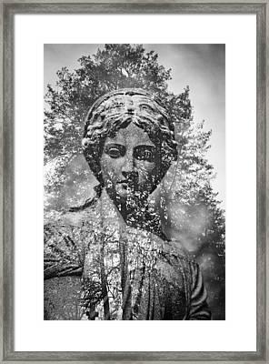 Spring Grove 14 Framed Print by Scott Meyer