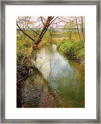Spring Happening Framed Print by Shirley Sirois