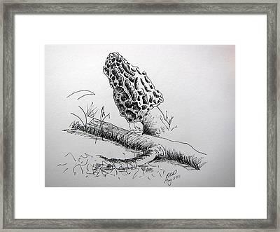 Spring Harvest Framed Print by Ramona Kraemer-Dobson