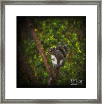 Spring Has Sprung Framed Print by Cris Hayes