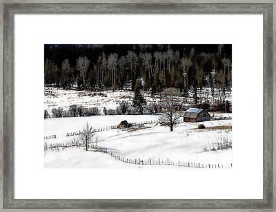 Spring Horizon Framed Print