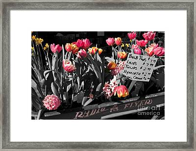 Framed Print featuring the photograph Spring In A Wagon by Sandi Mikuse