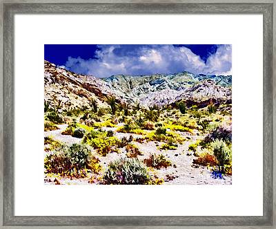 Spring In Anza Borrega  Framed Print by Bob and Nadine Johnston