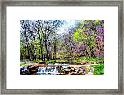 Spring In Dogwood Canyon Framed Print