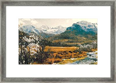 Spring In France Framed Print by Sorin Apostolescu