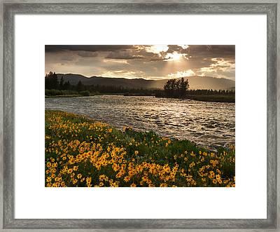 Spring In Harriman State Park Framed Print by Leland D Howard