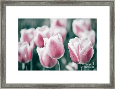 Spring In Love Framed Print