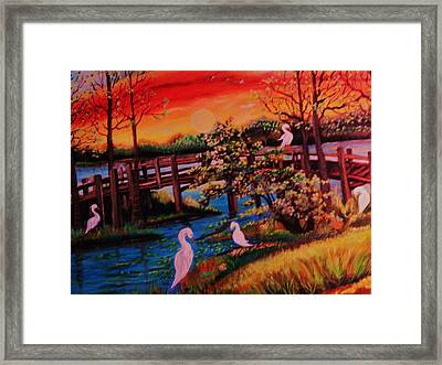Spring In Lutz Florida Framed Print