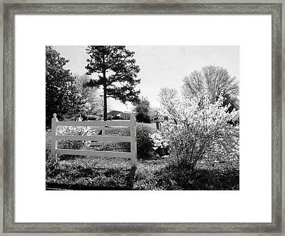 Spring In Martinsville Bw Framed Print by Angelia Hodges Clay