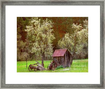 Spring In Old Ranch Framed Print by Irina Hays