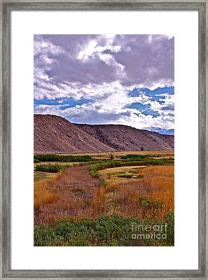 Spring In Pleasant Valley Framed Print