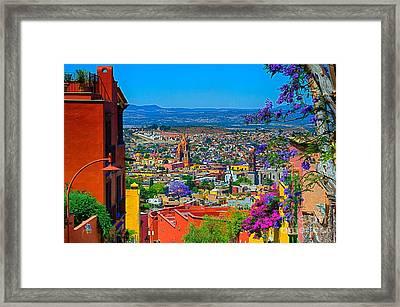 Spring In San Miguel De Allende Framed Print by Nicola Fiscarelli