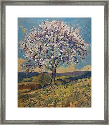 Spring In South Limburg Framed Print