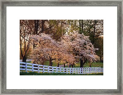 Spring In The Bluegrass - Fs000247 Framed Print