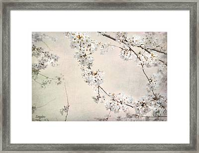 Spring In The City Framed Print